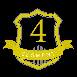 4.4) Professional Development